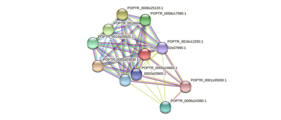 POPTR_0002s07990.1 protein (Populus trichocarpa) - STRING interaction network