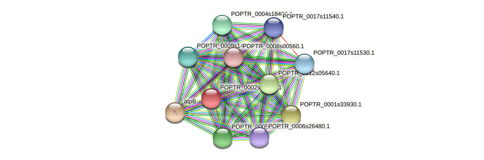 POPTR_0002s08330.1 protein (Populus trichocarpa) - STRING interaction network