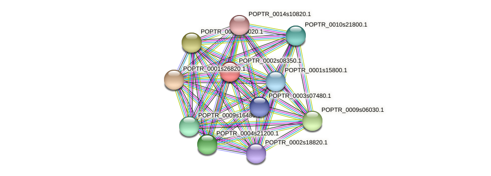 POPTR_0002s08350.1 protein (Populus trichocarpa) - STRING interaction network