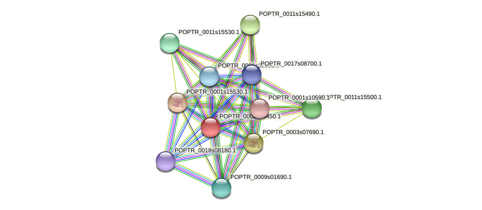 POPTR_0002s08450.1 protein (Populus trichocarpa) - STRING interaction network