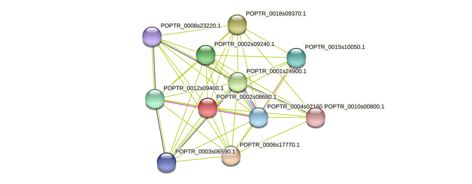 POPTR_0002s08680.1 protein (Populus trichocarpa) - STRING interaction network