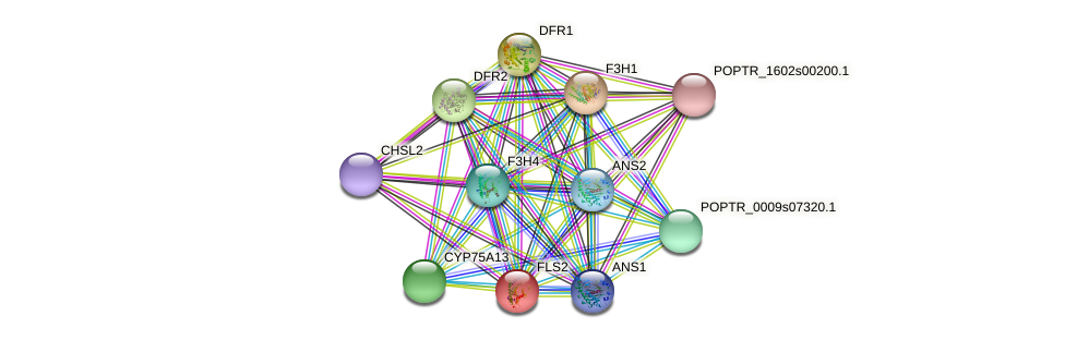 POPTR_0002s08720.1 protein (Populus trichocarpa) - STRING interaction network