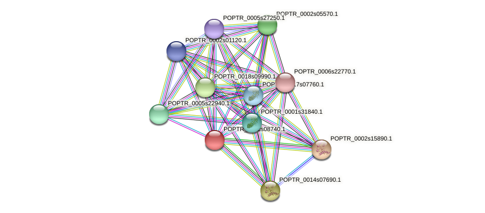 POPTR_0002s08740.1 protein (Populus trichocarpa) - STRING interaction network