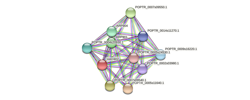 POPTR_0002s09010.1 protein (Populus trichocarpa) - STRING interaction network