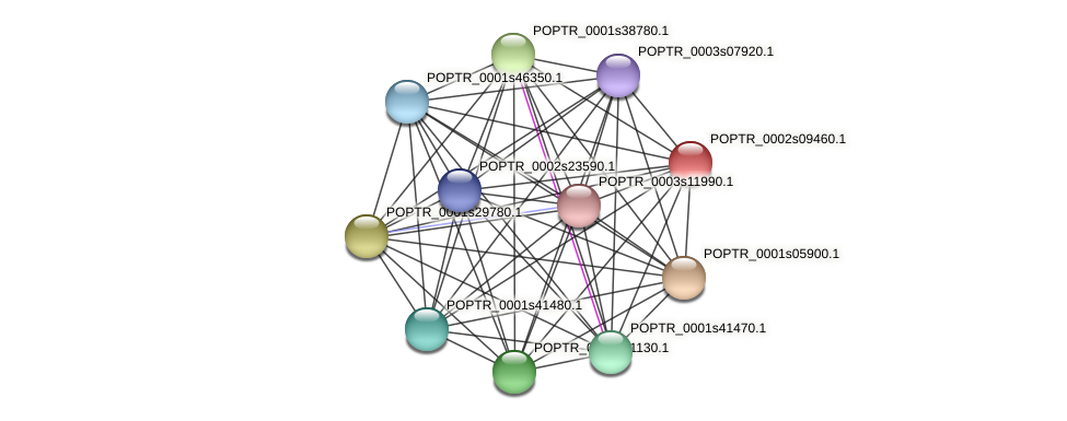 POPTR_0002s09460.1 protein (Populus trichocarpa) - STRING interaction network