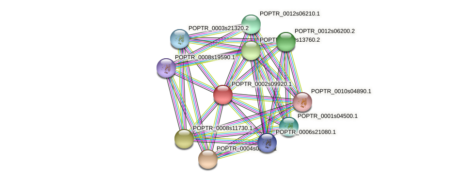 POPTR_0002s09920.1 protein (Populus trichocarpa) - STRING interaction network