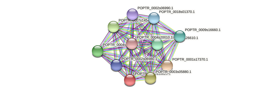 POPTR_0002s10020.1 protein (Populus trichocarpa) - STRING interaction network