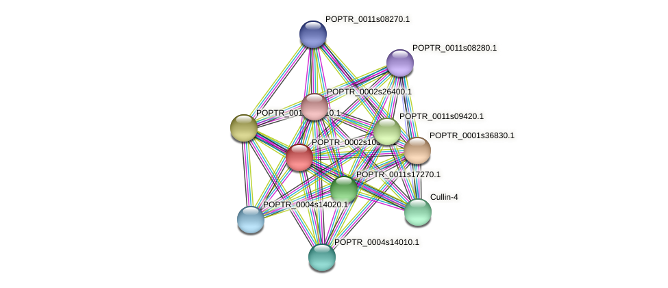 POPTR_0002s10340.1 protein (Populus trichocarpa) - STRING interaction network