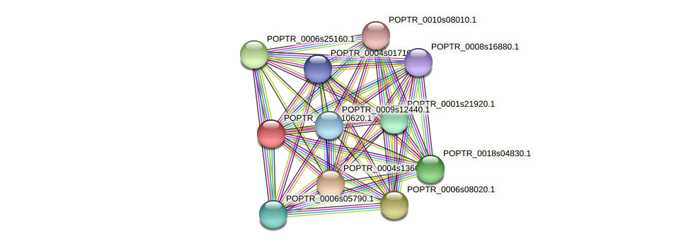 POPTR_0002s10620.1 protein (Populus trichocarpa) - STRING interaction network