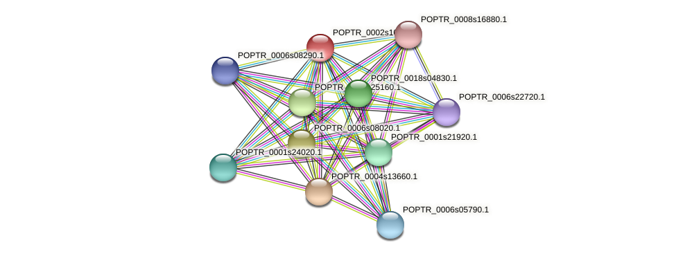 POPTR_0002s10630.1 protein (Populus trichocarpa) - STRING interaction network