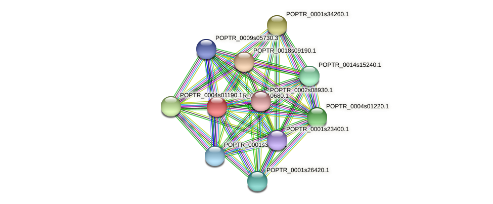 POPTR_0002s10680.1 protein (Populus trichocarpa) - STRING interaction network
