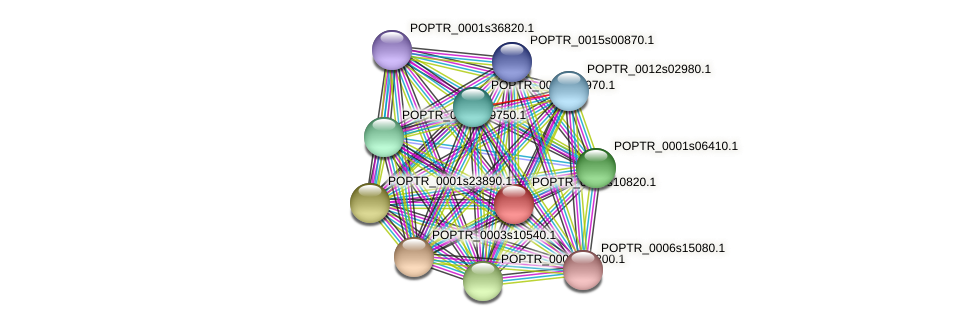 POPTR_0002s10820.1 protein (Populus trichocarpa) - STRING interaction network