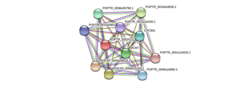POPTR_0002s11120.1 protein (Populus trichocarpa) - STRING interaction network