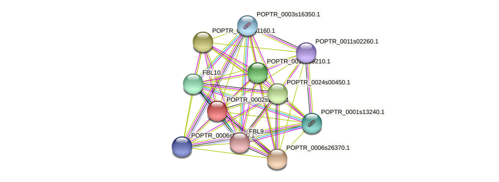 POPTR_0002s11150.1 protein (Populus trichocarpa) - STRING interaction network