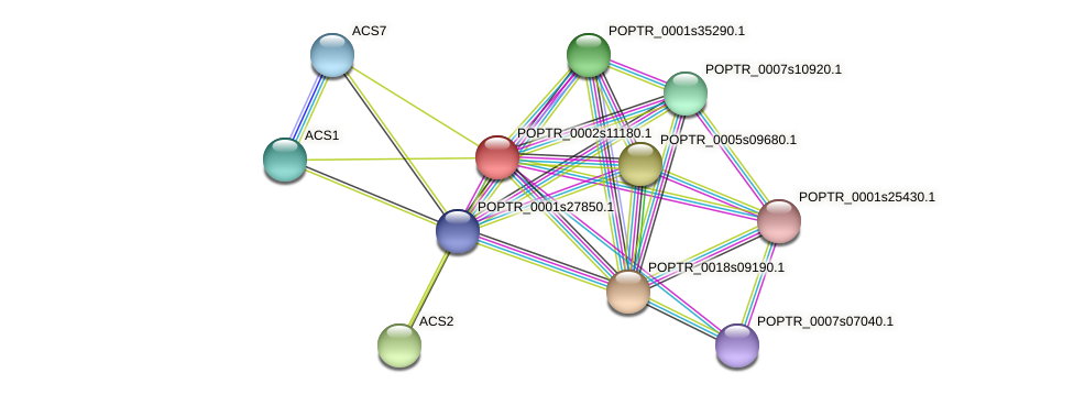 POPTR_0002s11180.1 protein (Populus trichocarpa) - STRING interaction network