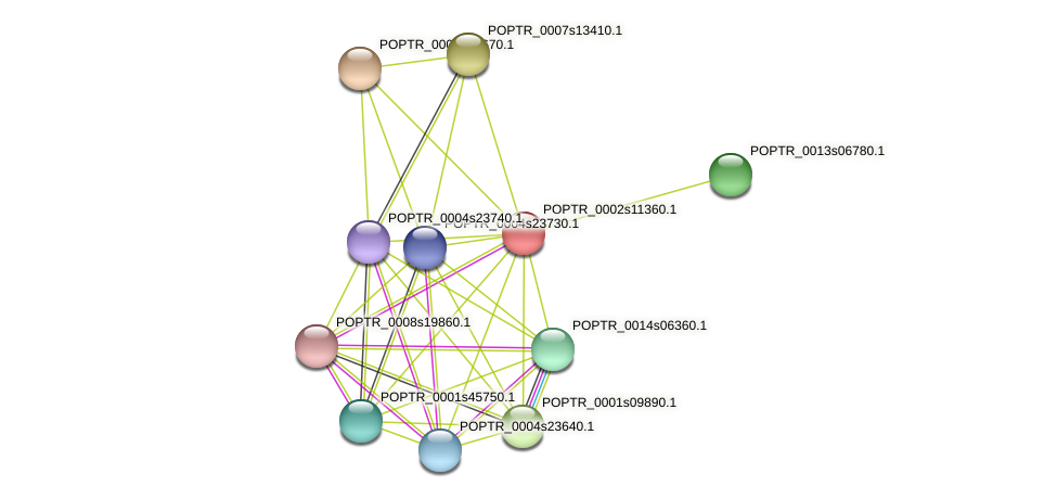 POPTR_0002s11360.1 protein (Populus trichocarpa) - STRING interaction network