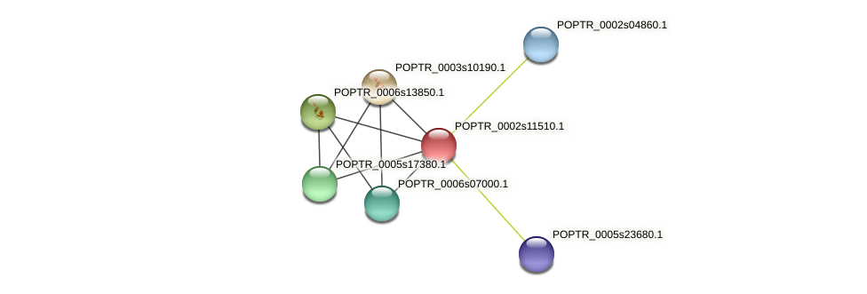 POPTR_0002s11510.1 protein (Populus trichocarpa) - STRING interaction network