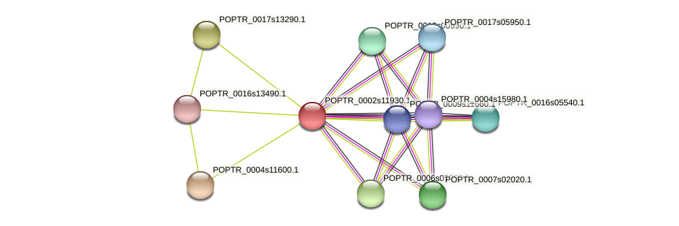POPTR_0002s11930.1 protein (Populus trichocarpa) - STRING interaction network