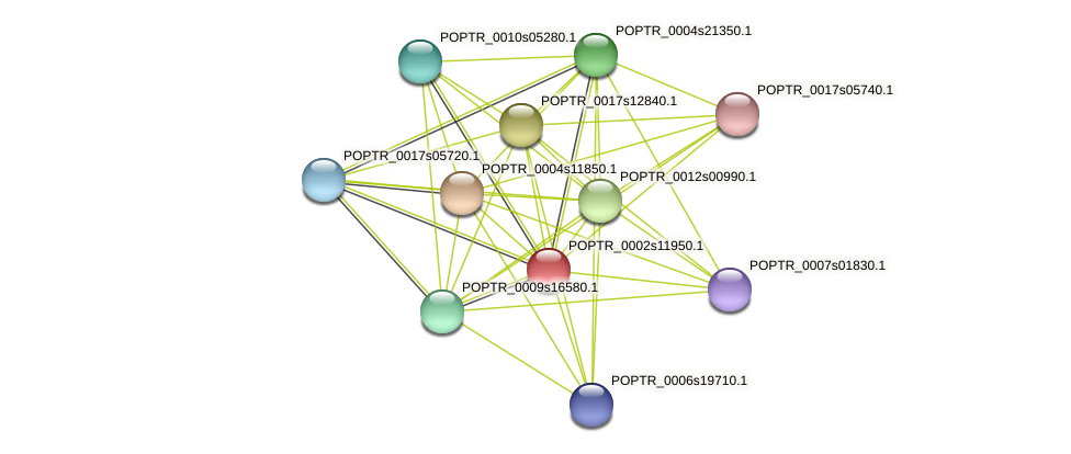 POPTR_0002s11950.1 protein (Populus trichocarpa) - STRING interaction network
