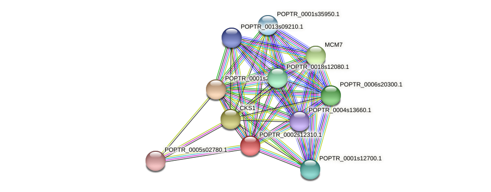 POPTR_0002s12310.1 protein (Populus trichocarpa) - STRING interaction network