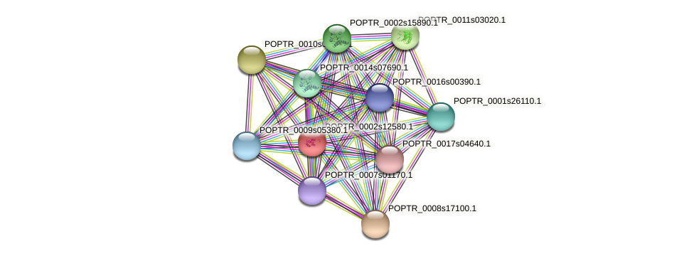 POPTR_0002s12580.1 protein (Populus trichocarpa) - STRING interaction network