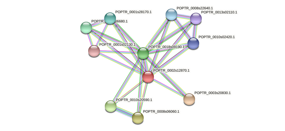 POPTR_0002s12870.1 protein (Populus trichocarpa) - STRING interaction network