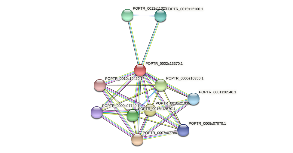 POPTR_0002s13370.1 protein (Populus trichocarpa) - STRING interaction network
