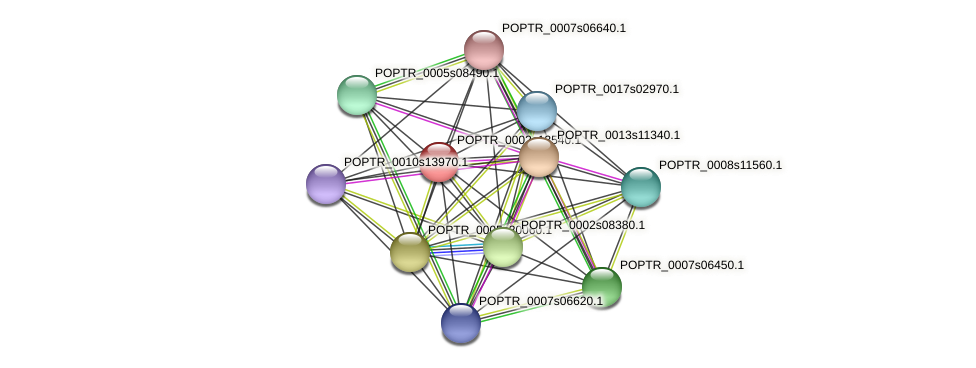 POPTR_0002s13540.1 protein (Populus trichocarpa) - STRING interaction network