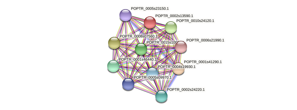 POPTR_0002s13590.1 protein (Populus trichocarpa) - STRING interaction network