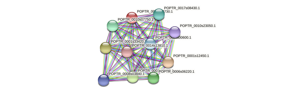 POPTR_0002s13730.1 protein (Populus trichocarpa) - STRING interaction network