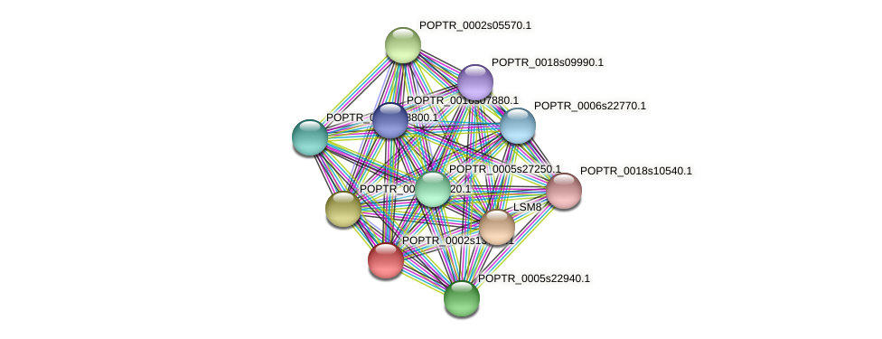 POPTR_0002s13770.1 protein (Populus trichocarpa) - STRING interaction network