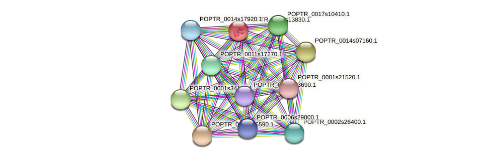 POPTR_0002s13830.1 protein (Populus trichocarpa) - STRING interaction network