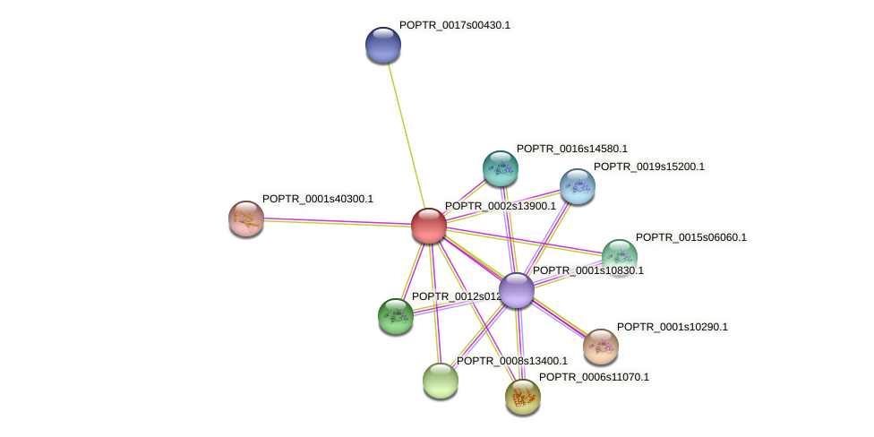 POPTR_0002s13900.1 protein (Populus trichocarpa) - STRING interaction network