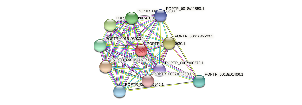 POPTR_0002s13930.1 protein (Populus trichocarpa) - STRING interaction network