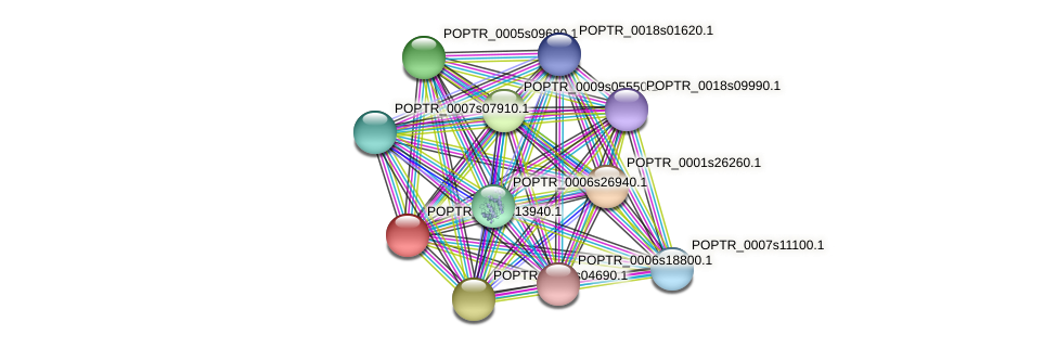 POPTR_0002s13940.1 protein (Populus trichocarpa) - STRING interaction network