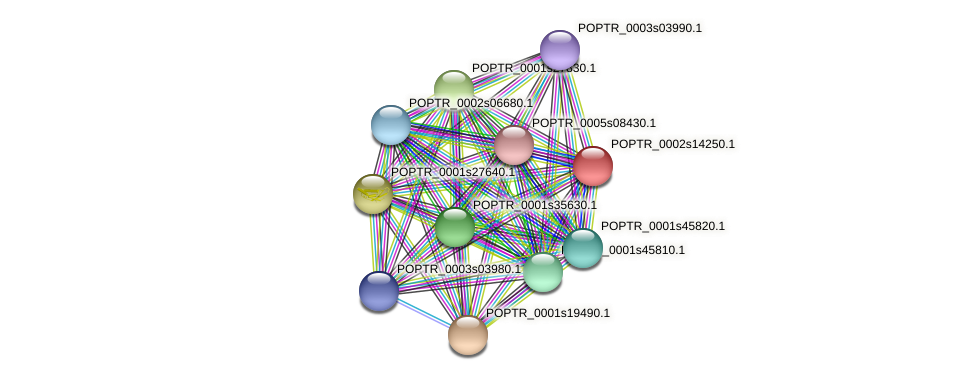 POPTR_0002s14250.1 protein (Populus trichocarpa) - STRING interaction network