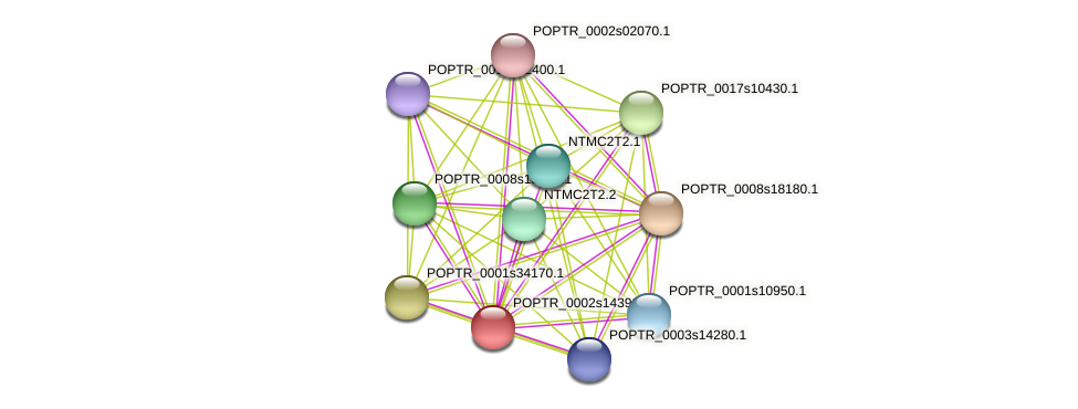 POPTR_0002s14390.1 protein (Populus trichocarpa) - STRING interaction network