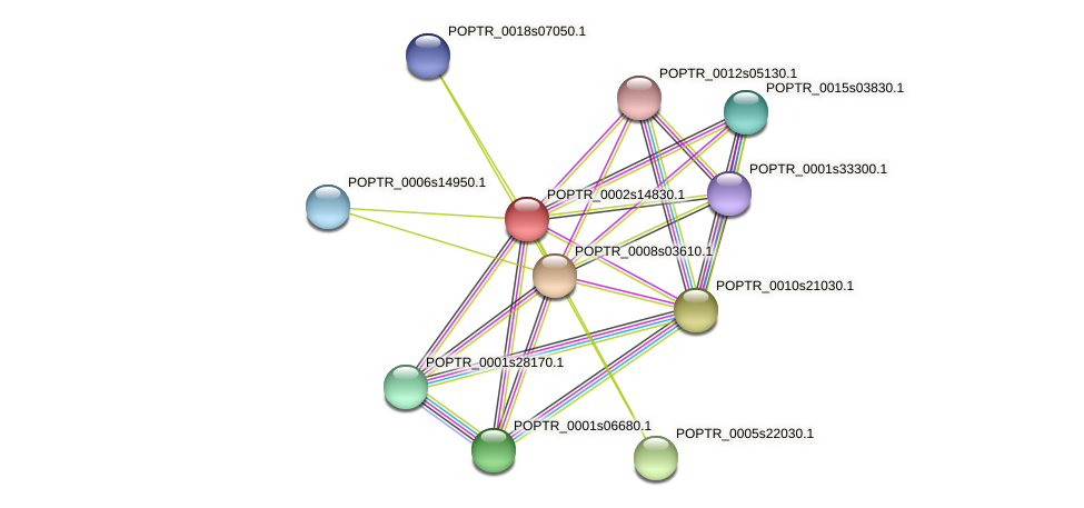 POPTR_0002s14830.1 protein (Populus trichocarpa) - STRING interaction network