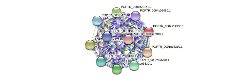 POPTR_0002s14930.1 protein (Populus trichocarpa) - STRING interaction network