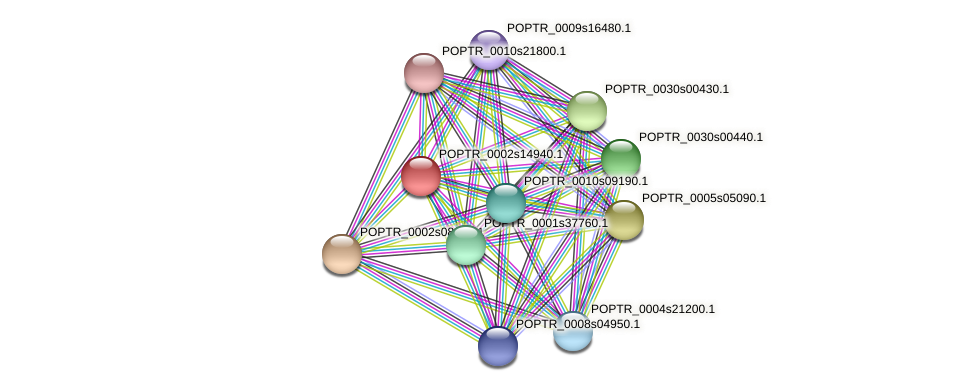 POPTR_0002s14940.1 protein (Populus trichocarpa) - STRING interaction network