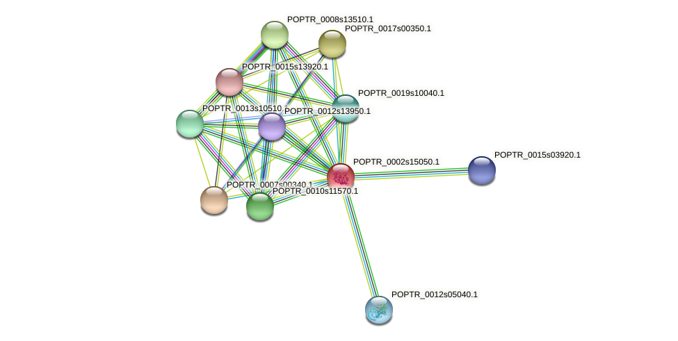 POPTR_0002s15050.1 protein (Populus trichocarpa) - STRING interaction network