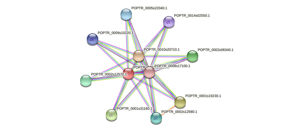 POPTR_0002s15220.1 protein (Populus trichocarpa) - STRING interaction network