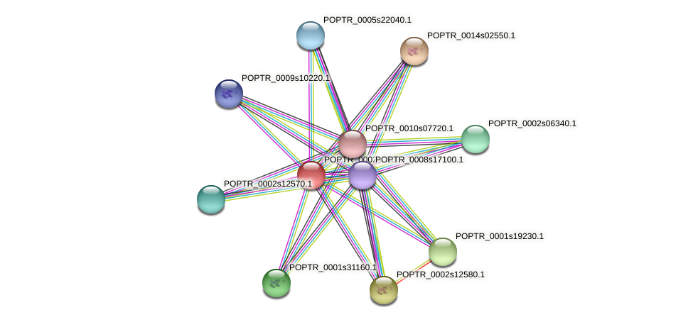 POPTR_0002s15230.1 protein (Populus trichocarpa) - STRING interaction network