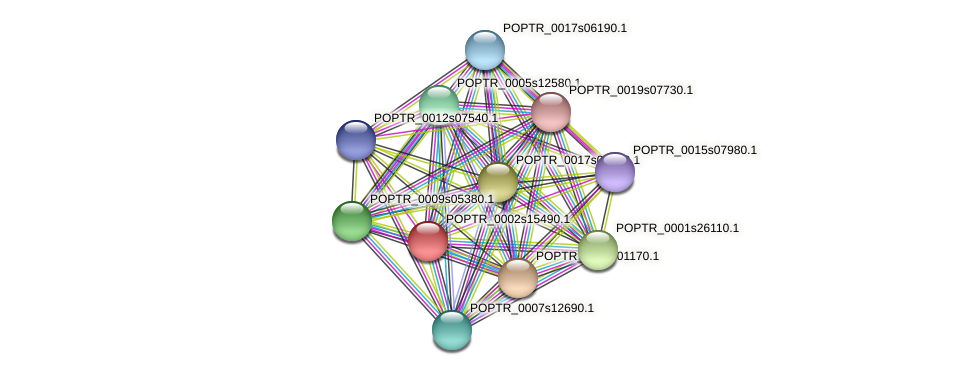 POPTR_0002s15490.1 protein (Populus trichocarpa) - STRING interaction network