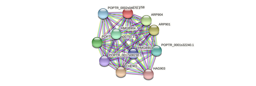 POPTR_0002s16230.1 protein (Populus trichocarpa) - STRING interaction network