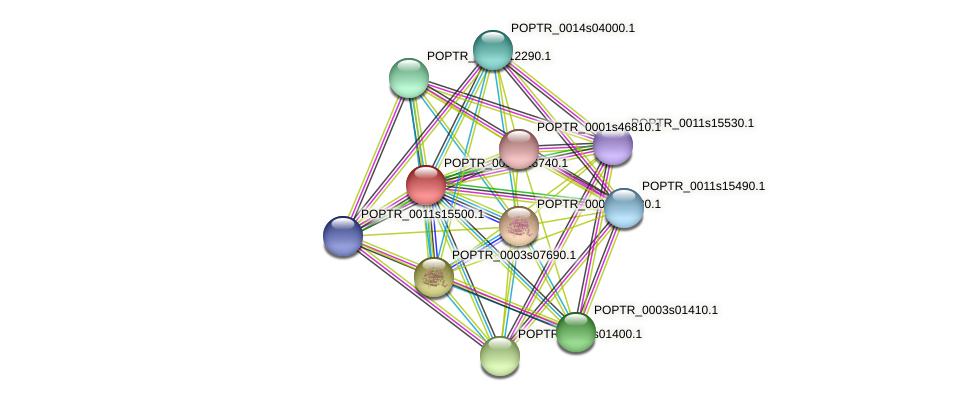 POPTR_0002s16740.1 protein (Populus trichocarpa) - STRING interaction network
