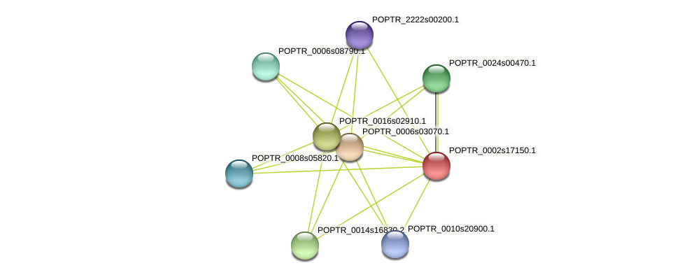 POPTR_0002s17150.1 protein (Populus trichocarpa) - STRING interaction network