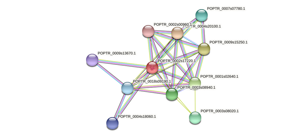 POPTR_0002s17220.1 protein (Populus trichocarpa) - STRING interaction network