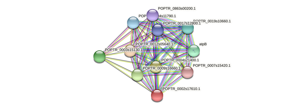 POPTR_0002s17610.1 protein (Populus trichocarpa) - STRING interaction network