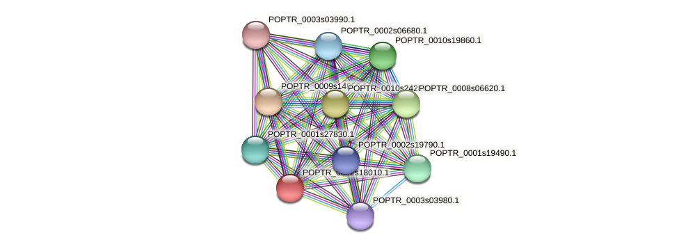 POPTR_0002s18010.1 protein (Populus trichocarpa) - STRING interaction network
